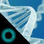 conheca-5-doencas-de-visao-hereditarias-e-como-identificalas